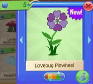 LoveW 6