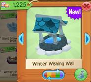 WinterW 5