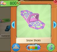 Snow shoes 3