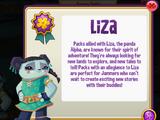 Liza Pack Hideout