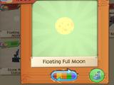 Floating Full Moon