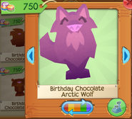 Birthday chocolate arctic wolf 3