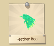 FeatherB 6