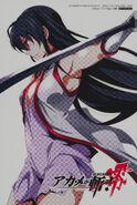 Akame (zero) Fanbook 2