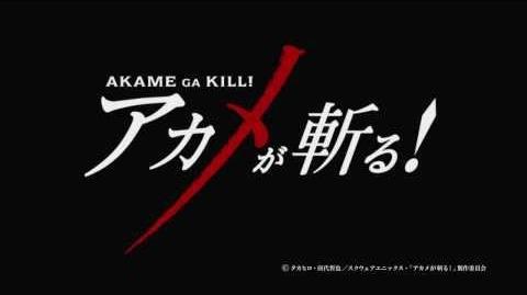 TVアニメ『アカメが斬る!』ティザーPV