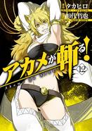 Akame ga kill Volume 12