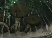 Atrapamoscas Gigante