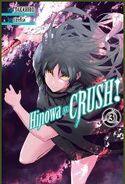 Hinowa cover 3