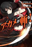Akame ga kill band 13 cover