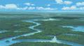 Bosque inmenso desde arriba