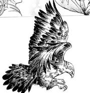 Gulfan wings
