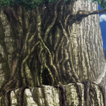Senjuso Tree.png