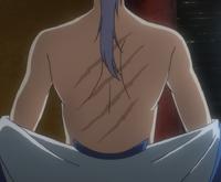 Kija's Scars.png