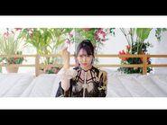 【MV】シダレヤナギ - NMB48
