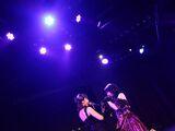 Oshibe to Meshibe to Yoru no Chouchou (JKT48 Song)