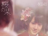 Sakura no Shiori (Song)