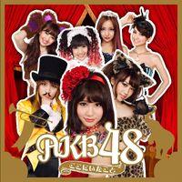 AKB48 - Koko ni Ita Koto reg.jpg