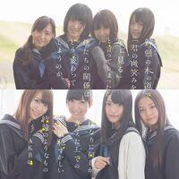 AKB48 Suzukake Nanchara TypeN.jpg