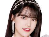 Sun ZhenNi