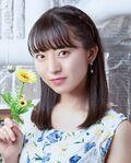 Imamura Mitsuki Aoi Himawari