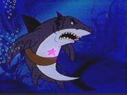 Aladdin Shark