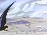 Sand Shark 41