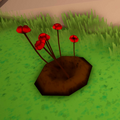 Rose Growth 2.png