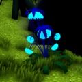 Jellyfish Plant.png