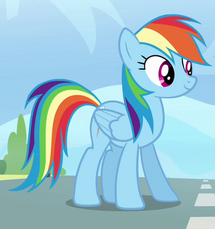 Rainbow Dash ID S3E7.png