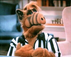Alf-referee.jpg