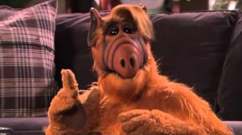 ALF Week on The Hub - ALF Commercial