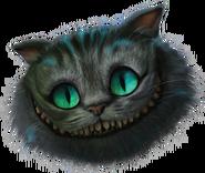 Cheshire head