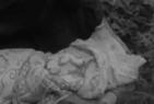 Cerdo-1966