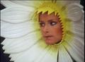 Margarita-1985