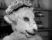 Oveja-1933