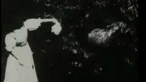 Alicia en el país de las maravillas-1903-muda-subtitulada