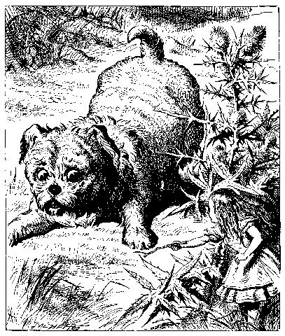 Tenniel-Dog.png