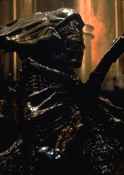 Alien Resurrection Queen1.jpg