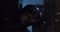 Soldier Alien3.jpg