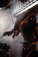 Alien still31