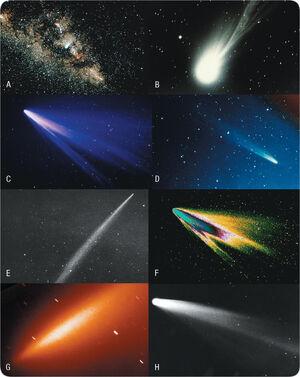 Comets-eight comets.jpg