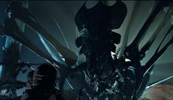 Queen Aliens.png