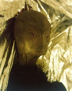 Reed Alien hoax.jpg