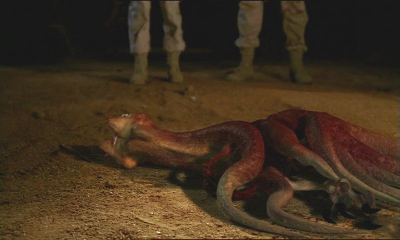 Flesh-Eating Creature (Stargate SG-1)