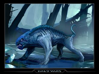 Halo wolf.jpg