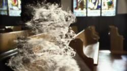 Dust Bug