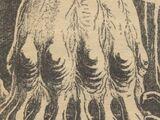 Lotophagus Veneris