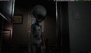 The Hum Grey Aliens