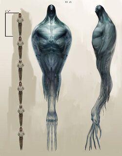 Heptapod Aliens.jpg