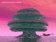 Solaris-Mountaintree